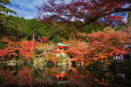 Daigo-ji or Daigoji pagoda with autumn foliage colors at fall with blue sky. Kyoto, Japan. Full bloom red maple tree during momiji season with famous travel landmark of Kansai.