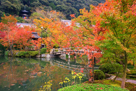 Japanese garden with autumn maple leaf with stone bridge and shrine at Eikando or Zenrin-ji Temple.  Japan. Kyoto famous travel destination landmark during fall. Editorial