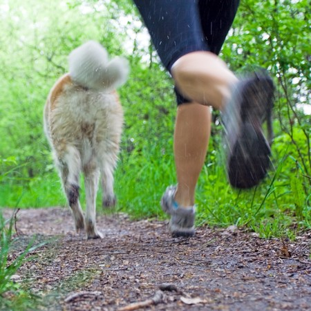 young woman running: Young woman running with akita dog in summer forest, motion blur Stock Photo