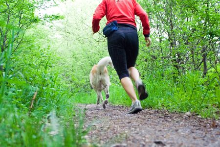 spring training: Woman running with akita dog in summer forest, motion blur. Visible water drops from wet dog. Stock Photo