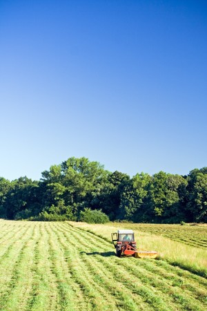 Tractor working on green grass field photo