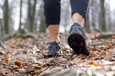 Hiking in autumn forest, sport shoes closeup photo
