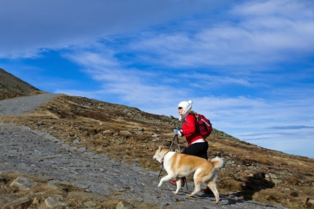Young woman hiking in autumn mountains with akita dog photo