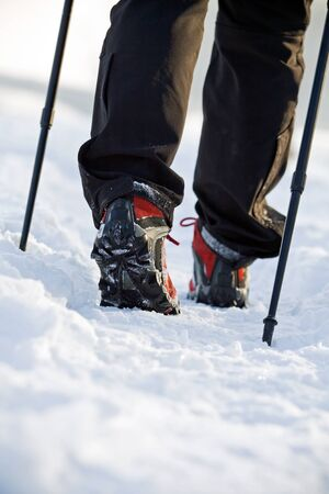 Woman exercising nordic walking in winter photo