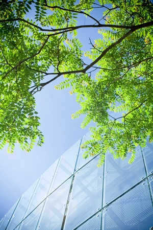 green building: Green business and office building with reflections Stock Photo