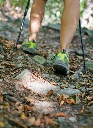 Woman hiking and nordic walking in autumn forest photo