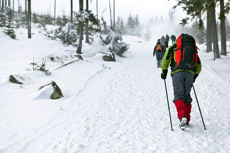 trekking pole: People on winter hike in mountains Stock Photo