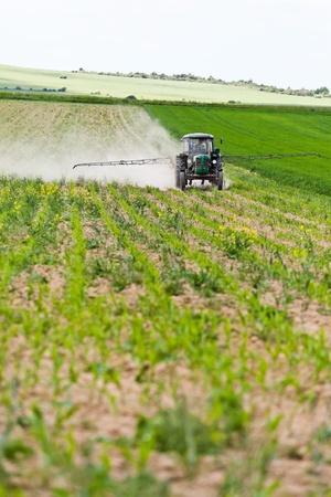 pulverizador: Tractor pulverizar un campo en la granja en la primavera, la agricultura