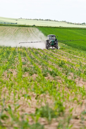 chemical fertilizer: Tractor spraying a field on farm in spring, agriculture