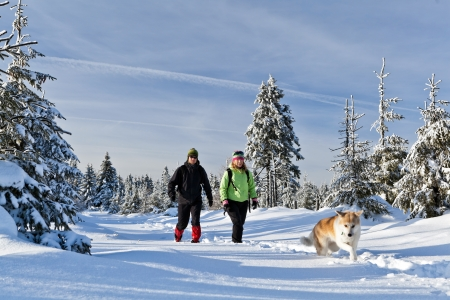 Man and woman hikers with akita dog on trekking in winter mountains Stock Photo - 15831692