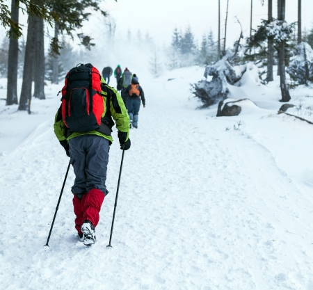 blizzard: People on winter hike in mountains. Hikers walking on snowy trail, cold nature environment in wilderness forest.