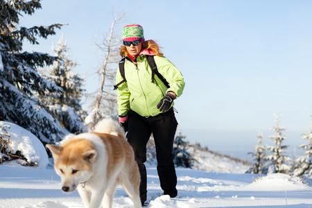 Woman hiking in winter mountains with akita dog. Female hiker walking on white snow with her dog friend, sport and recreation outdoors in nautre, Poland. photo
