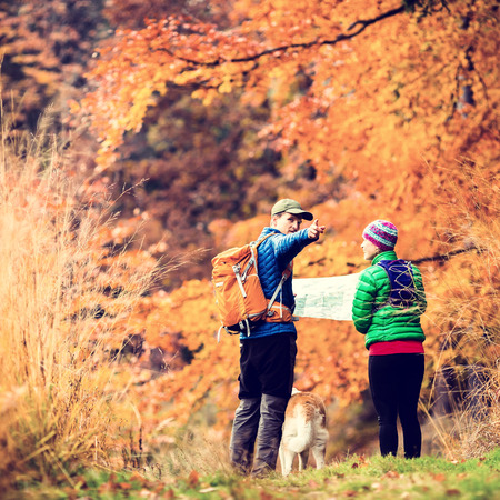 Man and woman hikers hiking in autumn colorful forest with akita dog. Young couple looking at map and planning trip or get lost, vintage retro instagram style photo