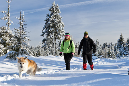 Man and woman young couple hikers hiking with akita dog on trekking in winter mountains. Trekkers walking on white powder snow in beautiful forest, outdoors landscape. Happiness and friendship, leisure recreation in nature