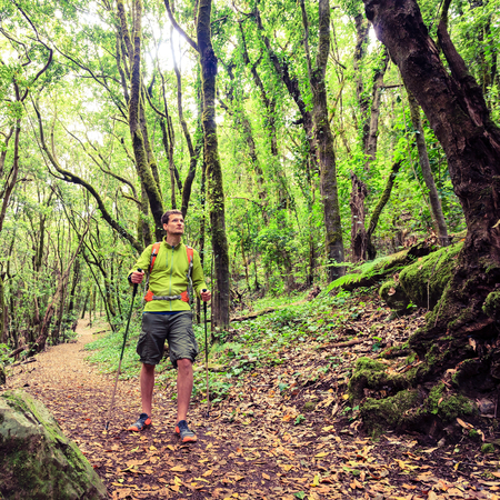 hiking stick: Man hiker hiking in green forest. Young male looking around planning trip or get lost in the beautiful green forest of La Gomera Canary Islands Spain.