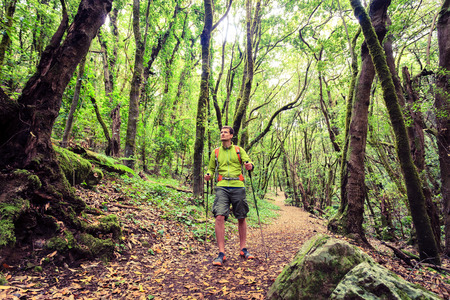 forest trail: Man hiker hiking in green forest. Young male looking around planning trip or get lost in the beautiful green forest of La Gomera Canary Islands Spain.