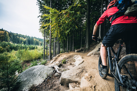 woods: Mountain biker riding on bike in autumn inspirational mountains landscape. Man cycling MTB on enduro trail track. Sport fitness motivation and inspiration.