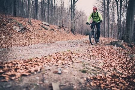 森の中のトレイルで山のバイカー。冬や秋の風景林の山。男農村田舎道にサイクリング MTB。スポーツ フィットネス動機とインスピレーション。