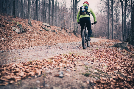 Mountain biker on cycle trail in woods. Mountains in winter or autumn landscape forest. Man cycling MTB on rural country road. Sport fitness motivation and inspiration.