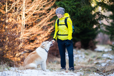 weekend activities: Woman hiking in white winter forest woods with akita dog. Recreation fitness and healthy lifestyle outdoors in nature. Motivation and inspirational winter landscape.
