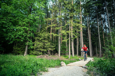 bike trail: Mountain biker riding on bike in spring inspirational mountains landscape.