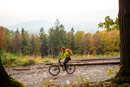 mtb: Mountain biker riding on bike in autumn or winter inspirational forest landscape. Man cycling MTB on dirty road in woods. Sport and active recreation, fitness motivation and inspiration. Stock Photo