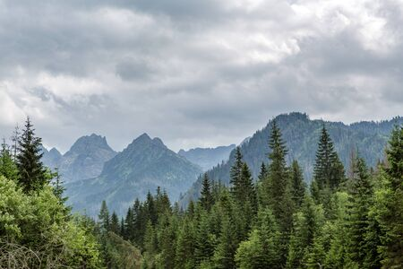 Inspiring Mountains Landscape, cloudy day in summer Tatras, woods and mountain ridge over cloudy sky, Slovakia
