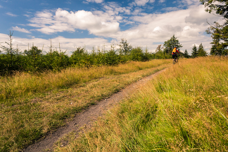 Mountain biker riding on bike in summer inspirational mountains landscape. Man cycling MTB on enduro trail path. Sport fitness motivation and inspiration. Rider mountain biking in summer woods. photo