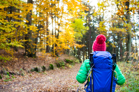 Hiking woman with backpack looking at inspirational autumn golden woods. Fitness travel and healthy lifestyle outdoors in fall season. Travelling female backpacker, walking and looking around.
