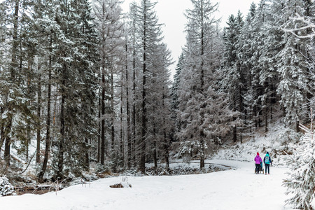Mother with baby stroller enjoying motherhood in winter forest, mountains landscape. Two women hiking with sledge pram in woods. Beautiful winter snowy inspirational mountains. Imagens