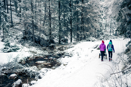 Mother with baby stroller enjoying motherhood in winter forest, mountains landscape. Jogging or power walking woman with sledge pram in woods. Beautiful winter snowy inspirational mountains.