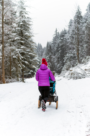 Mother with baby stroller enjoying motherhood in winter forest, mountains landscape. Hiking woman with sledge pram in woods. Beautiful winter snowy inspirational mountains. Imagens