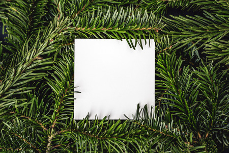 Christmas card note on green spruce tree branches wbackground. Top closeup view with copy space. Imagens