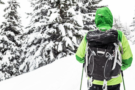 Winter trek in white snowy forest. Man hiking in winter woods. Travel and healthy lifestyle outdoors in beautiful nature. Imagens