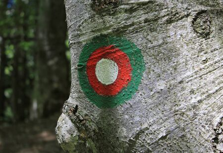 slovenian alpine red and white circular trail blaze on the tree photo