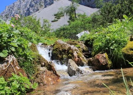 karawanks: alpine creek in Karavanke mountains, Slovenia Stock Photo