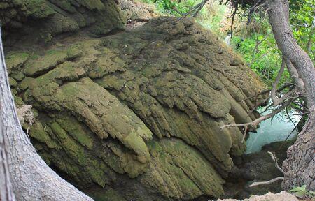 natural formation: Abstract natural formation on Krka river bank, Croatia Stock Photo