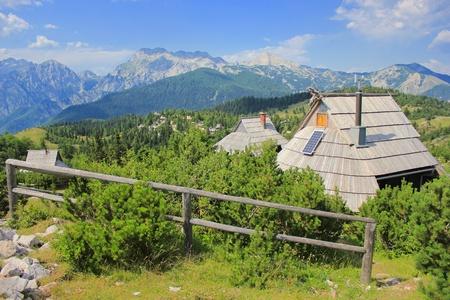 Alpine cottage and dwarf pine landscape, Kamnik and Savinja Alps, Slovenia