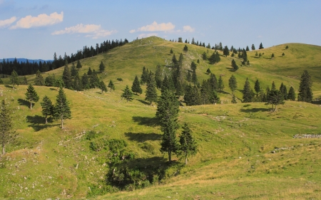 Velika planina mountain pastureland, Kamnik Alps, Slovenia
