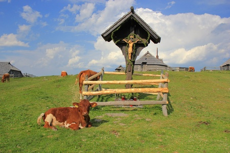 Wooden cross pastureland, Velika planina, Kamnik and Savinja Alps, Slovenia photo
