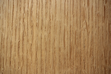 lineas verticales: Superficie de la madera, el roble Quercus - l�neas verticales