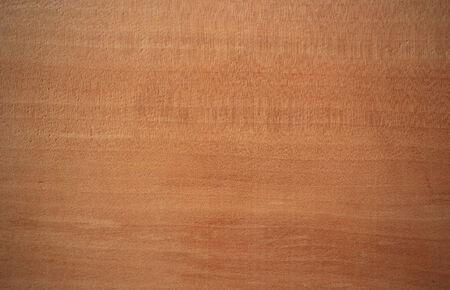 pyrus: Wood surface, pear tree  Pyrus   - horizontal lines Stock Photo