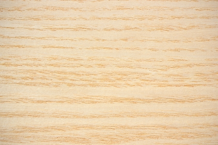 Wood surface, ash  Fraxinus  - horizontal lines