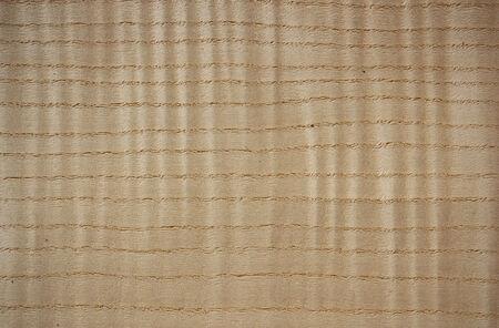 Wood surface, flame curly ash  Fraxinus  - horizontal lines
