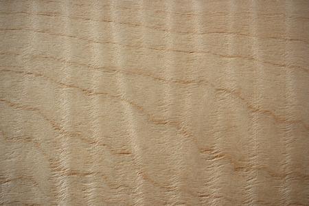 Wood surface, Flame maple  Acer  veneer