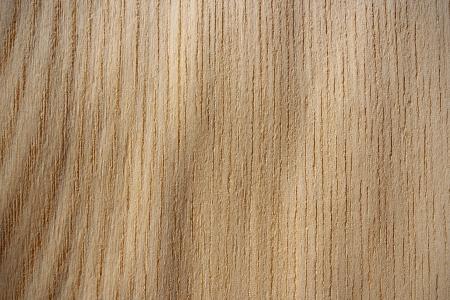 Wood surface, japanese elm,  Ulmus davidiana var  japonica  -vertical lines
