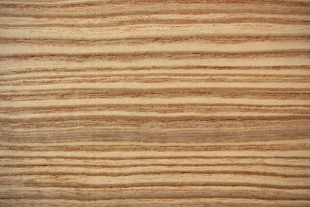 Wood surface, olive ash,  Fraxinus  - horizontal lines