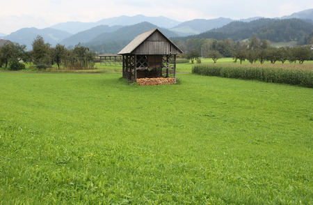 Green rural landscape with traditional wooden hayrack, Slovenia Stock Photo