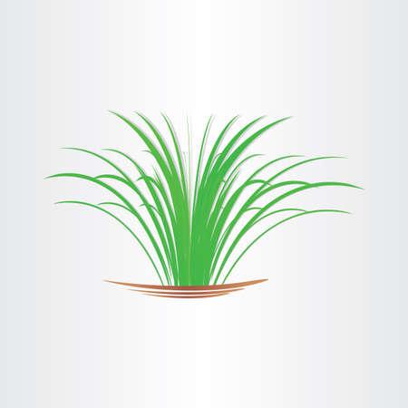 garden design: erba verde lussureggiante giardino astratto elemento di design