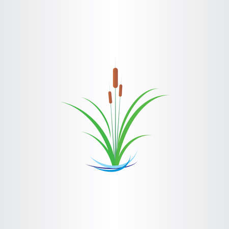 green reed bulrushes vector design symbol